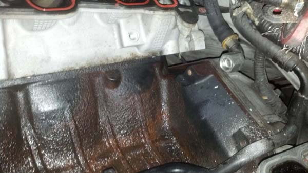 Engine Head Gasket Leak Side Head Gasket Leak