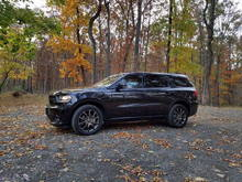 My 2016 Dodge Durango Brass Monkey