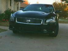 2013 Maxima SV sport package