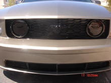 Painted front grille and lower valance