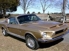 My Mustang GT500