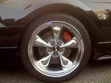 00 Mustang 6