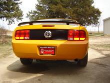 rear panel blackout