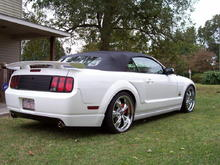 NEW MUSTANG PIC 12