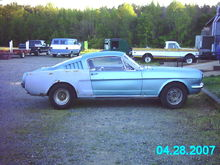 Mustang now 4