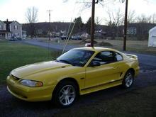 Mustang (5)
