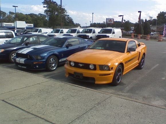 trading my GO GT/CS for the GT 500.....I miss that car :(
