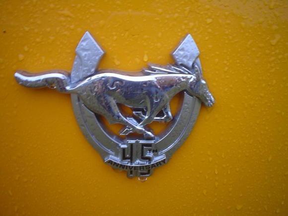 45th Anniversary Badge