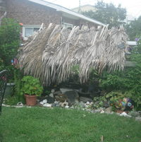 Tiki hut over our pond.  Helps keep the pond water clear and the fish from becoming food for the herons. Made out of 4x4's, plywood and palm fronds.