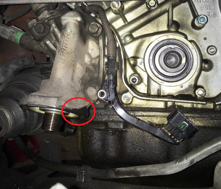 Oil Leak Pics, Help Identify!