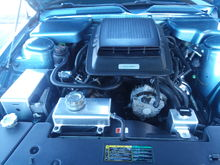 475 horse Celine super shaker supercharger ford racing cams ported heads chrome rocker boxes with a  3.2 pulley on the supercharger battery cover master cylinder cover shock tower covers all custom painted blue Also Carl by the Winchell wipers painted blue all stainless steel oil boxes