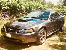 My 2003 Mustang GT Deluxe Convertible