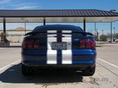 '96 Mustang 8