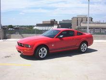 Mustang 036sm