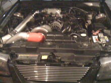 D1 Procharger Kit installed 1-11-2010