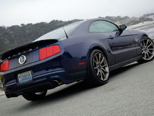 2010 Mustang Supersnake with a little photoshop work