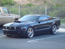 the stang
