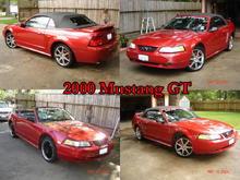 My Previous Mustang