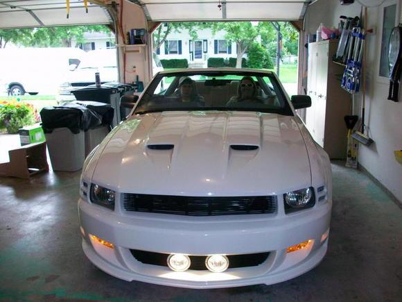 Mustang Stalker 001