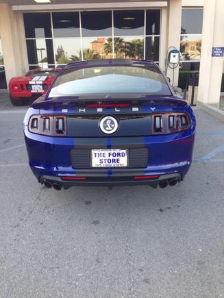 2014 Shelby