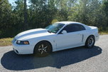New Edge Mustang Cobra 4v Twin Turbo Drag or Street  for sale $27,500