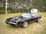 1979 Pontiac Firebird  for sale $20,000