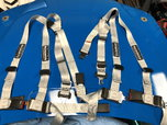 Schroth Harnesses for Mustangs  for sale $350
