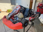 Racing Briggs Animal Kart  for sale $2,100