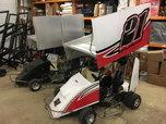 New SKE Wing Kart  for sale $3,900