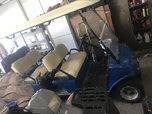 6 seater evolution gold cart