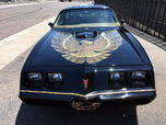 1981 Pontiac Firebird  for sale $26,100