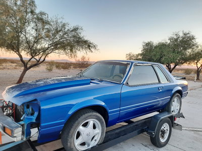 Fox Body Notch Mustang