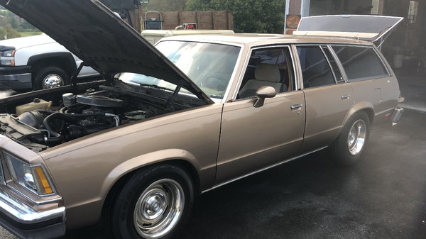 79 Malibu Wagon With Extra LS 60 For Sale 6500
