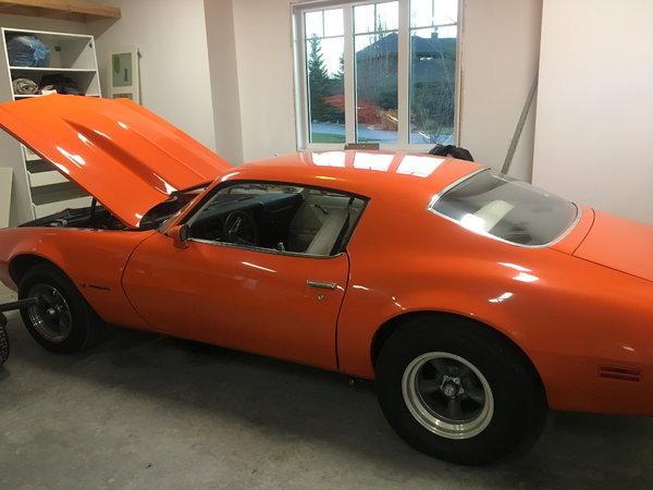 1973 Pontiac Firebird  for Sale $28,500