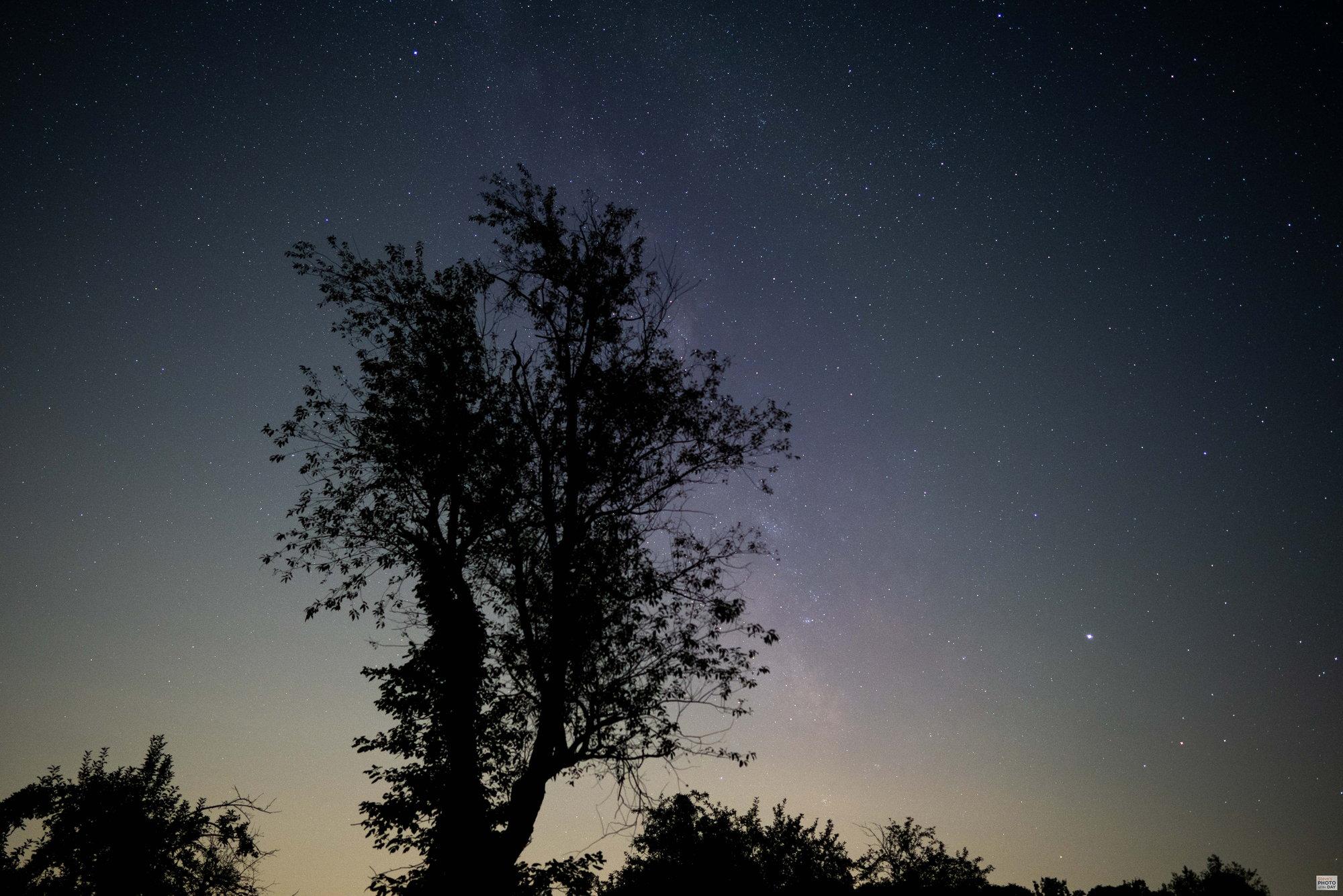 Milky Way at the Farm