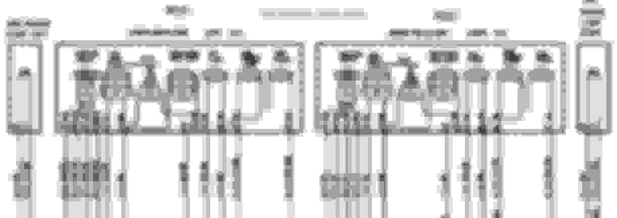 Here Is The 996 And 997 Wiring Diagram From Porsche Technical Guide: Porsche 911 Turbo Wiring Diagram At Satuska.co