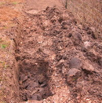 Creating new beds for 2013 digging down deep to add organic matter