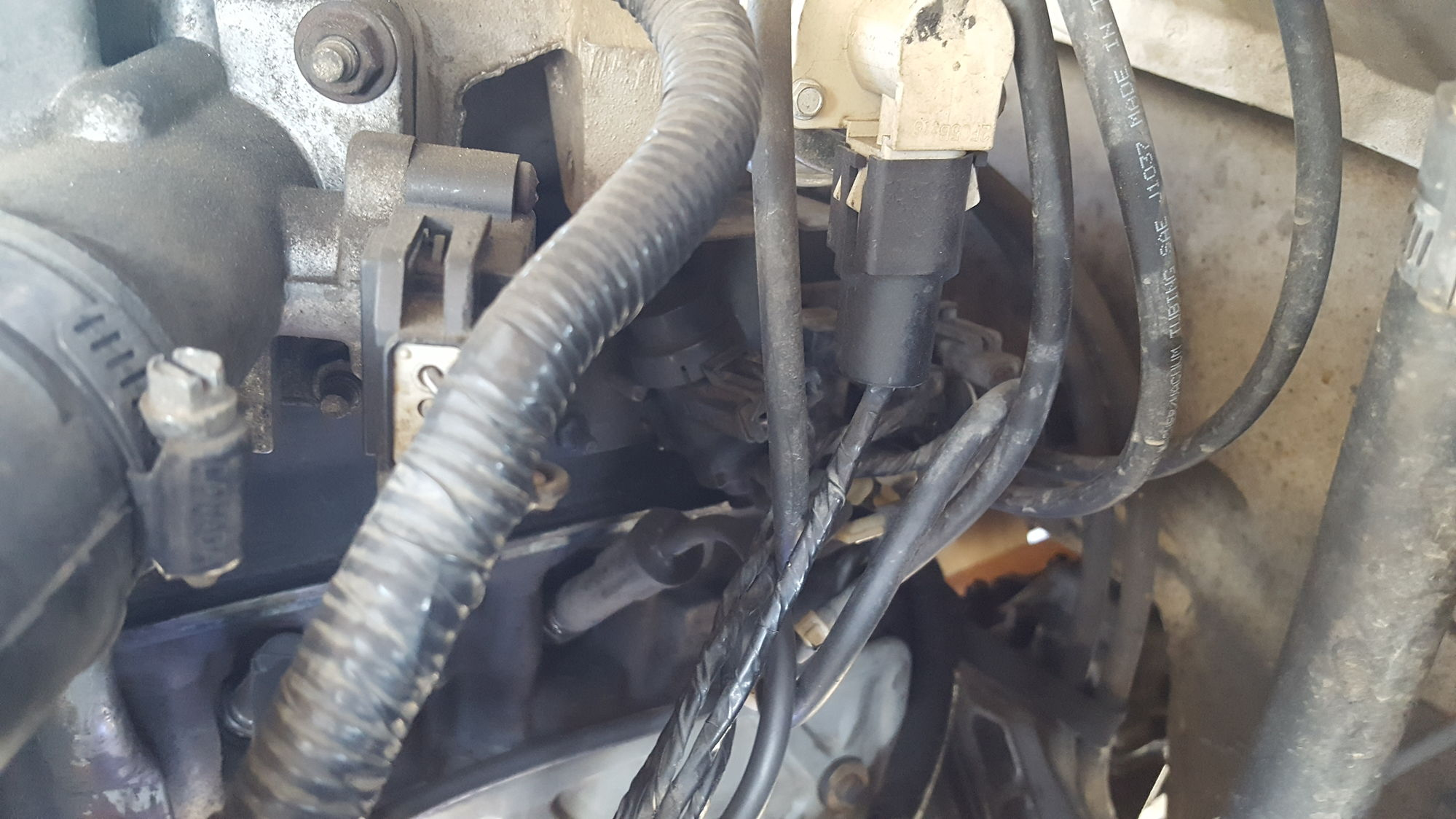 1303109 Vacuum Lines 1995 F150 4 9l on ford f 150 engine diagram for 2000 v 6