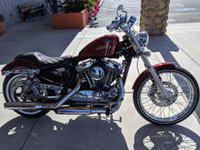 The day I picked my new iron horse!