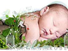 Untitled Album by MommaTrish - 2011-07-05 00:00:00