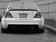 Lower Rear.