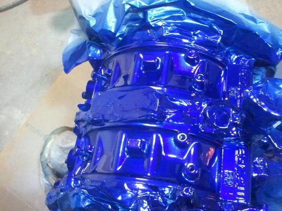 cobalt kandy.blue