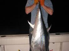 6/29/09 150 bft caught on chunk around 10:00pm with fozen squid