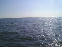 20  miles  out  into  lake  erie