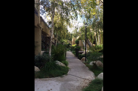 Camarillo Oaks 107 Reviews Camarillo Ca Apartments For Rent
