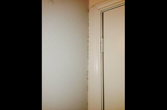 Canyon Oaks Apartments - 87 Reviews   San Antonio, TX Apartments for ...