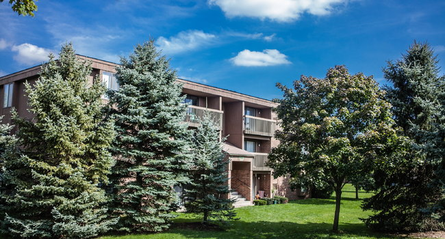 Exterior building with trees in courtyard at Dover Hills Apartments in Kalamazoo, MI