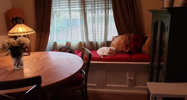 Round Table Aliso Viejo.Barcelona Resort Apartments 73 Reviews Aliso Viejo Ca